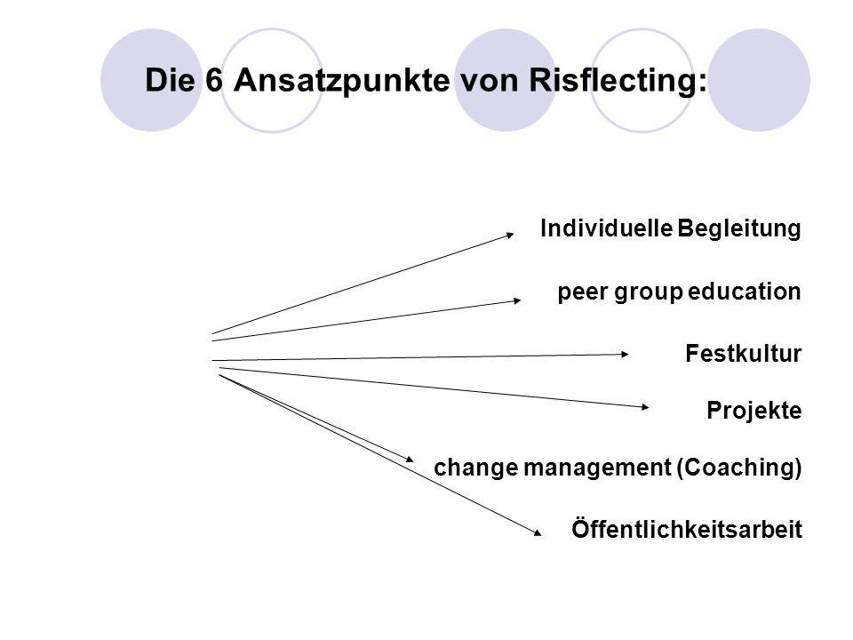Die 6 Ansatzpunkte von Risflecting: