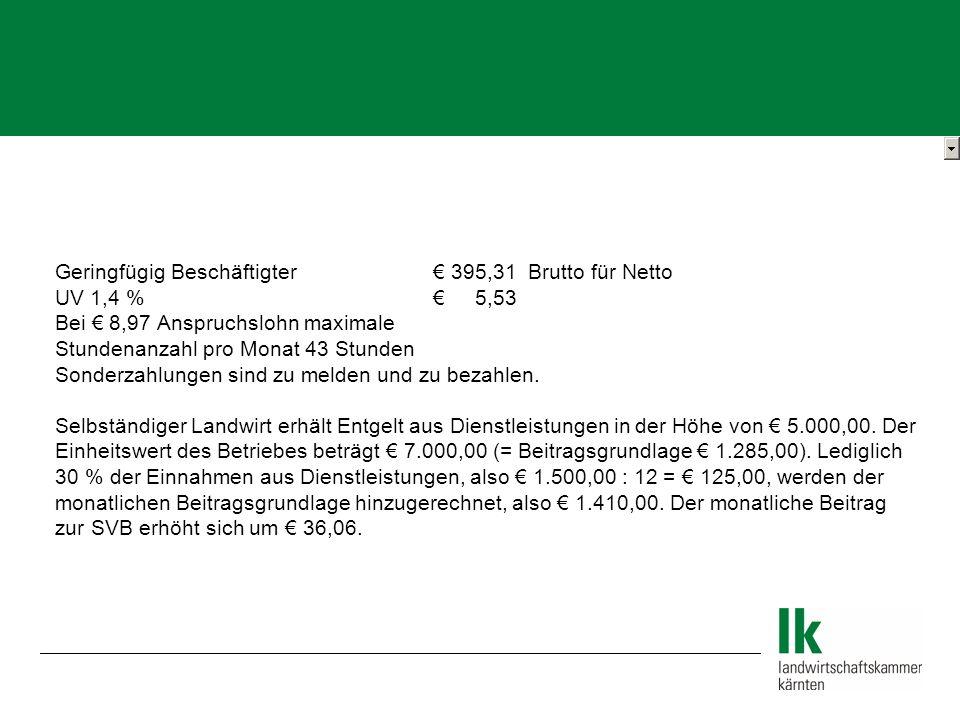 Geringfügig Beschäftigter € 395,31 Brutto für Netto
