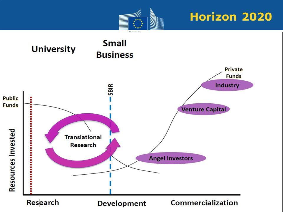 Horizon 2020 emerging or established firms. typical bottlnecks