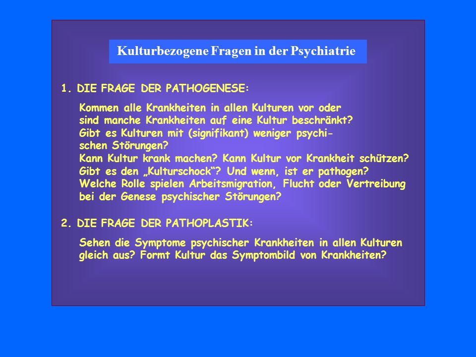 Kulturbezogene Fragen in der Psychiatrie