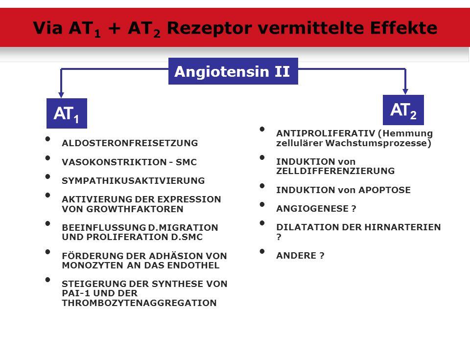 Via AT1 + AT2 Rezeptor vermittelte Effekte