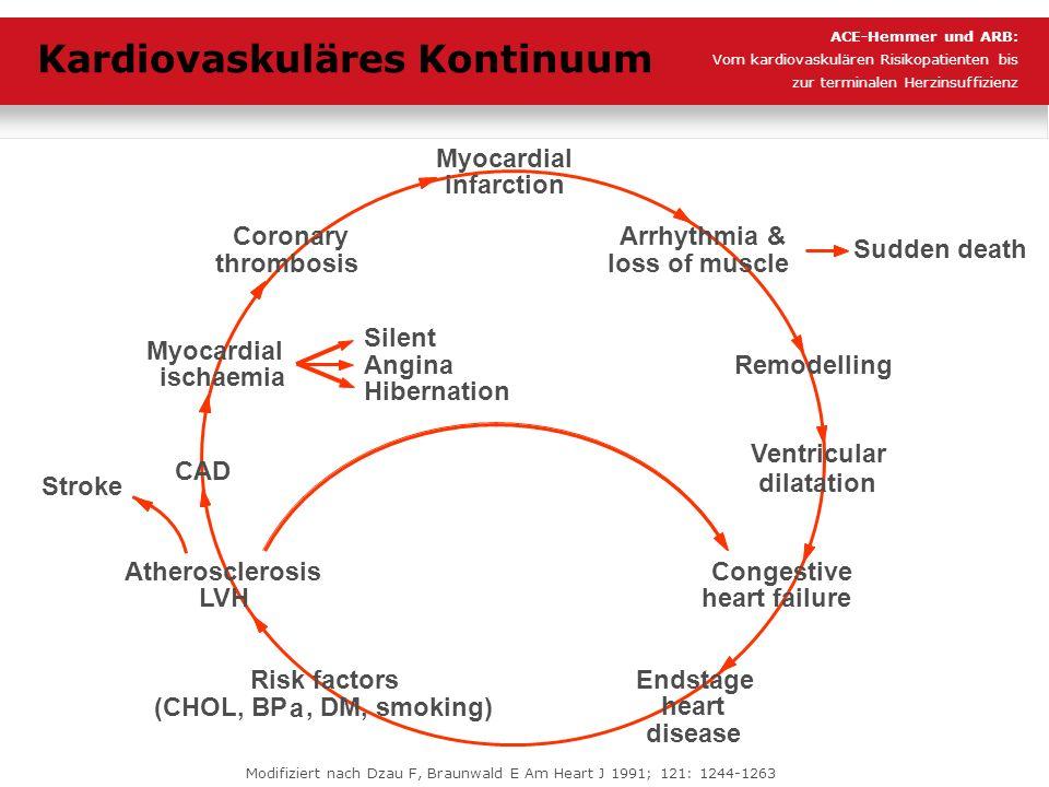 Kardiovaskuläres Kontinuum
