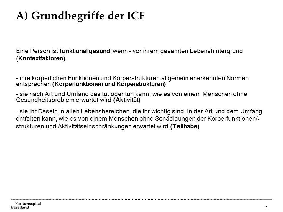 A) Grundbegriffe der ICF