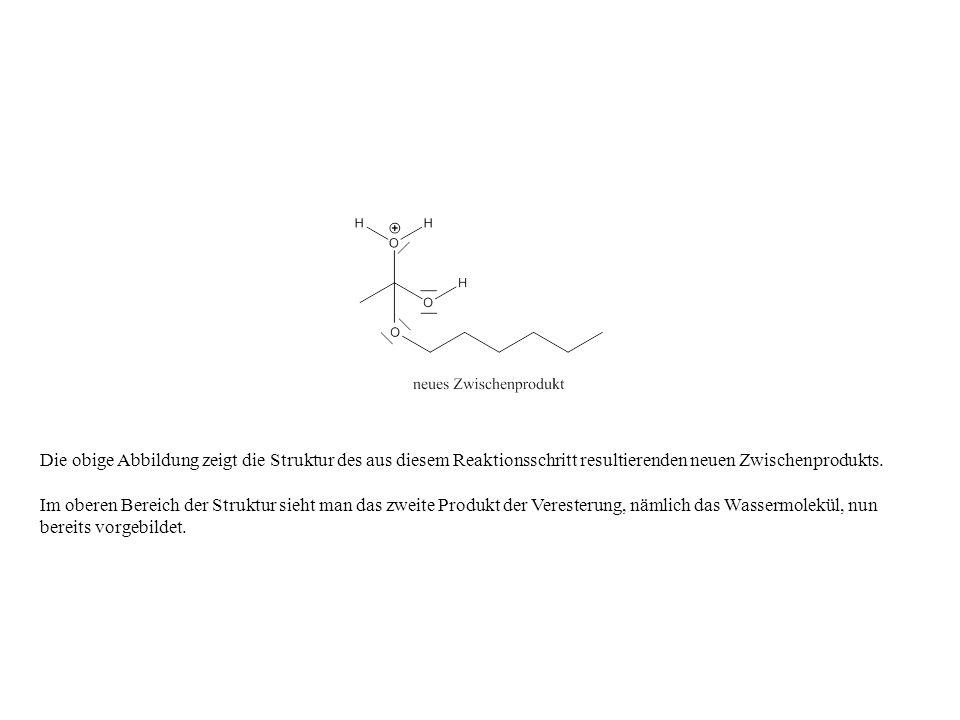 Die obige Abbildung zeigt die Struktur des aus diesem Reaktionsschritt resultierenden neuen Zwischenprodukts.