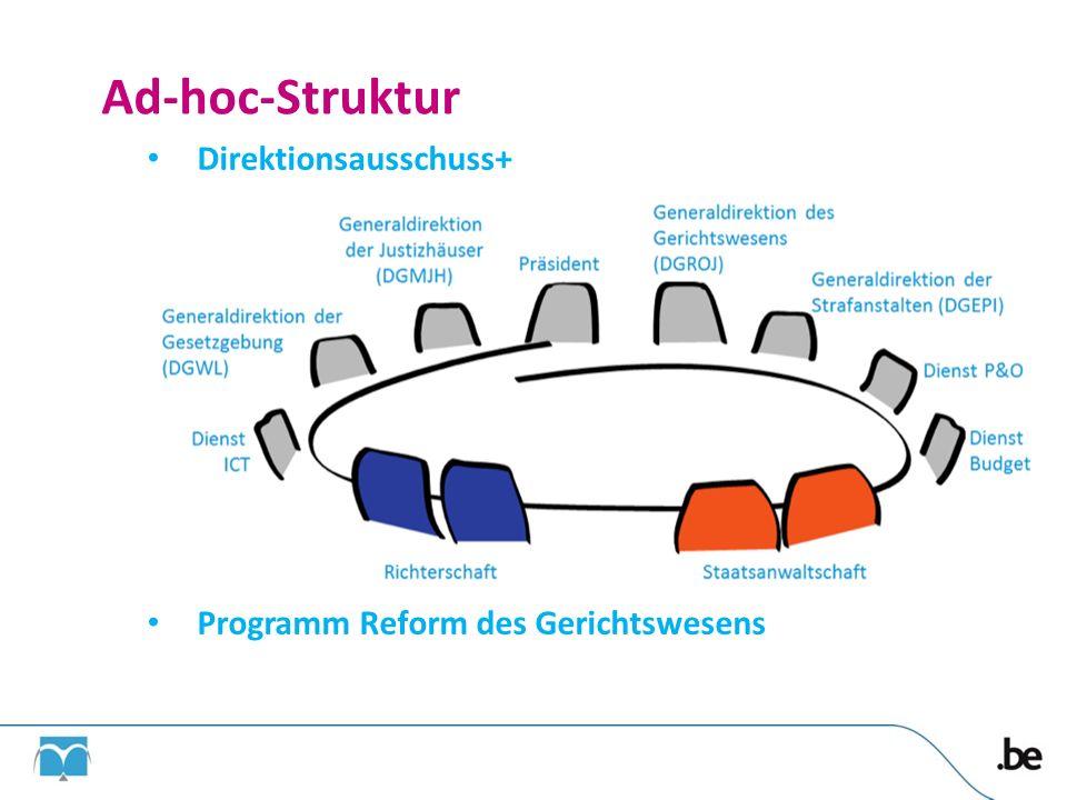 Ad-hoc-Struktur Direktionsausschuss+