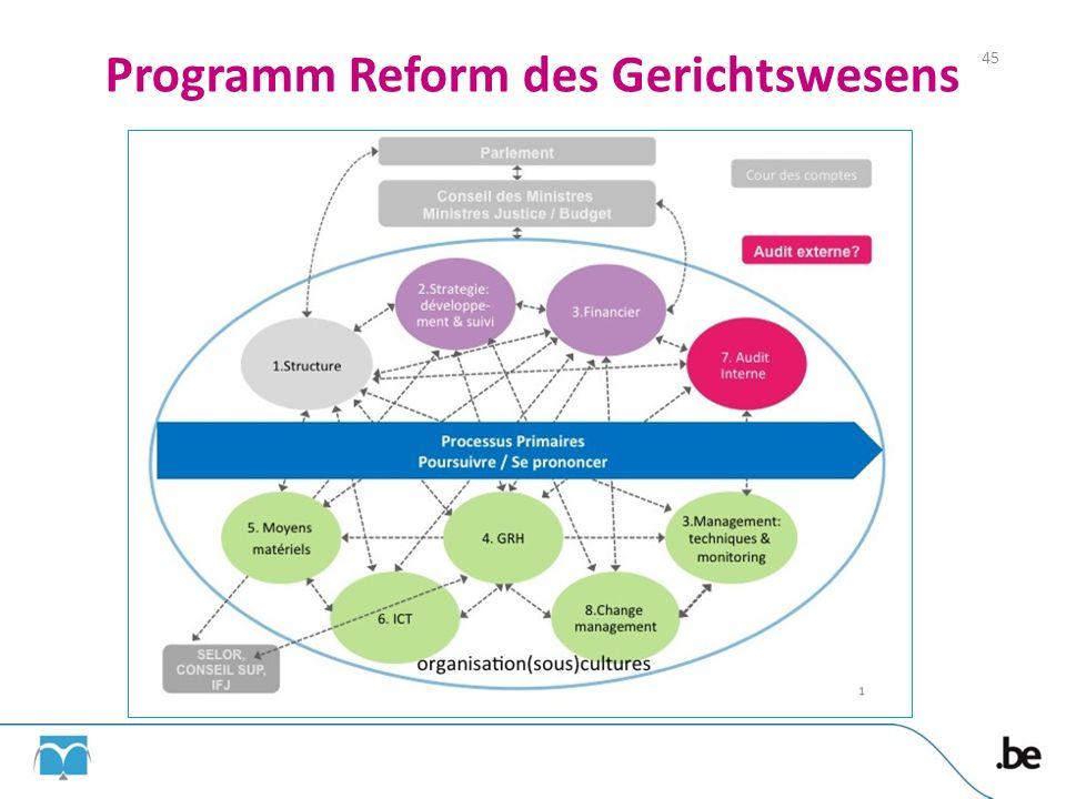 Programm Reform des Gerichtswesens