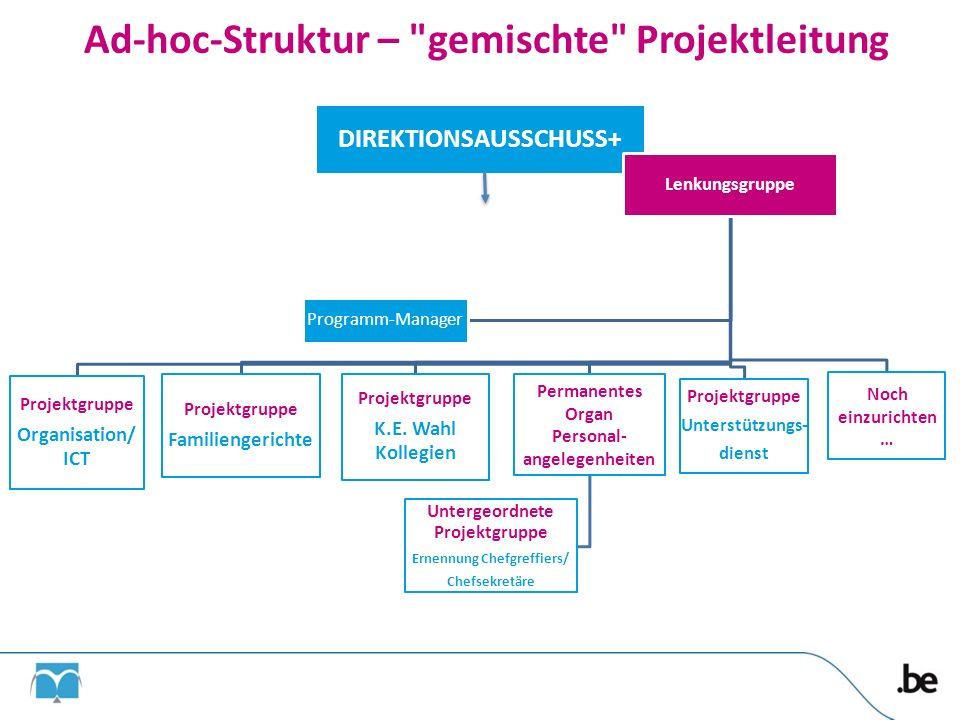 Ad-hoc-Struktur – gemischte Projektleitung