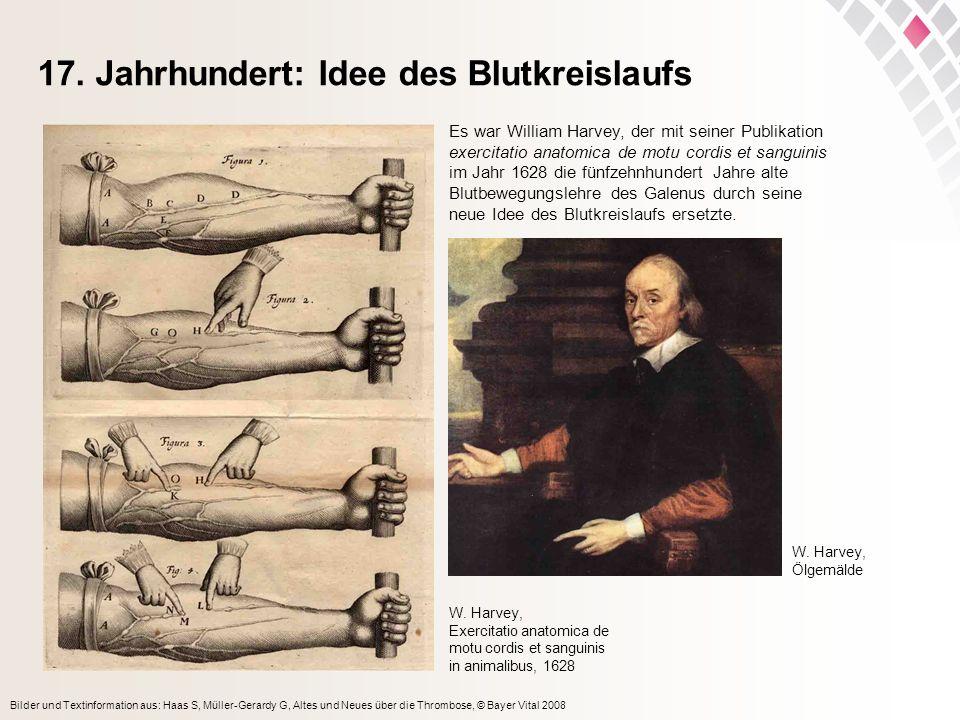 17. Jahrhundert: Idee des Blutkreislaufs