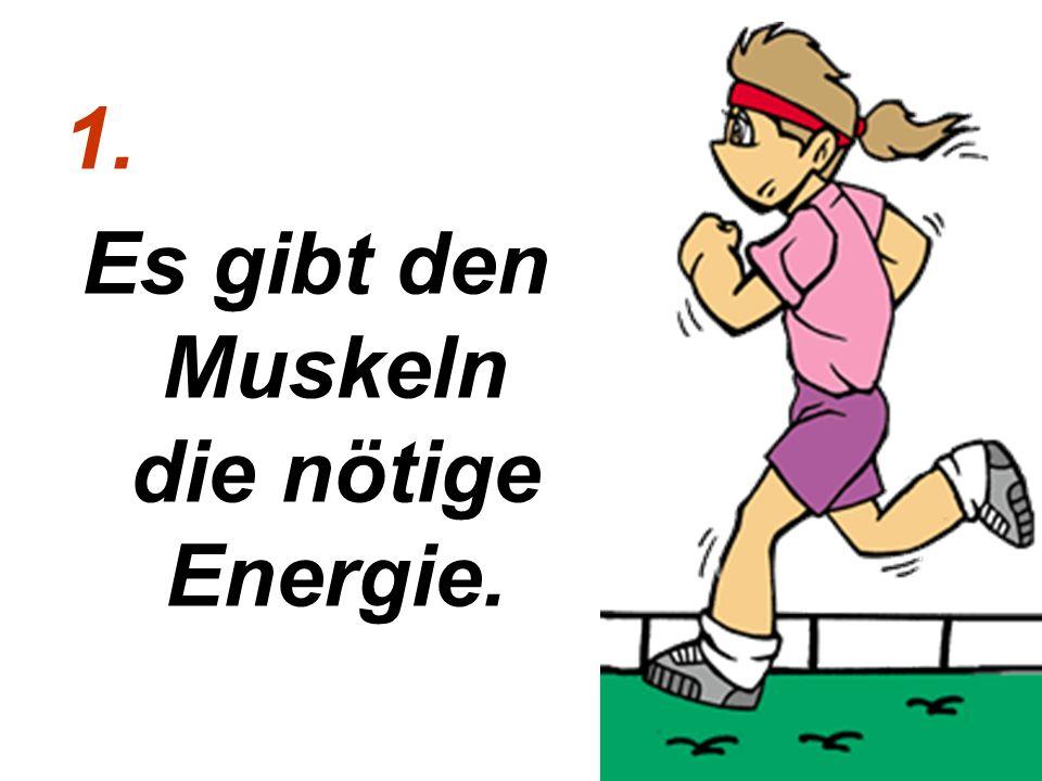 Es gibt den Muskeln die nötige Energie.