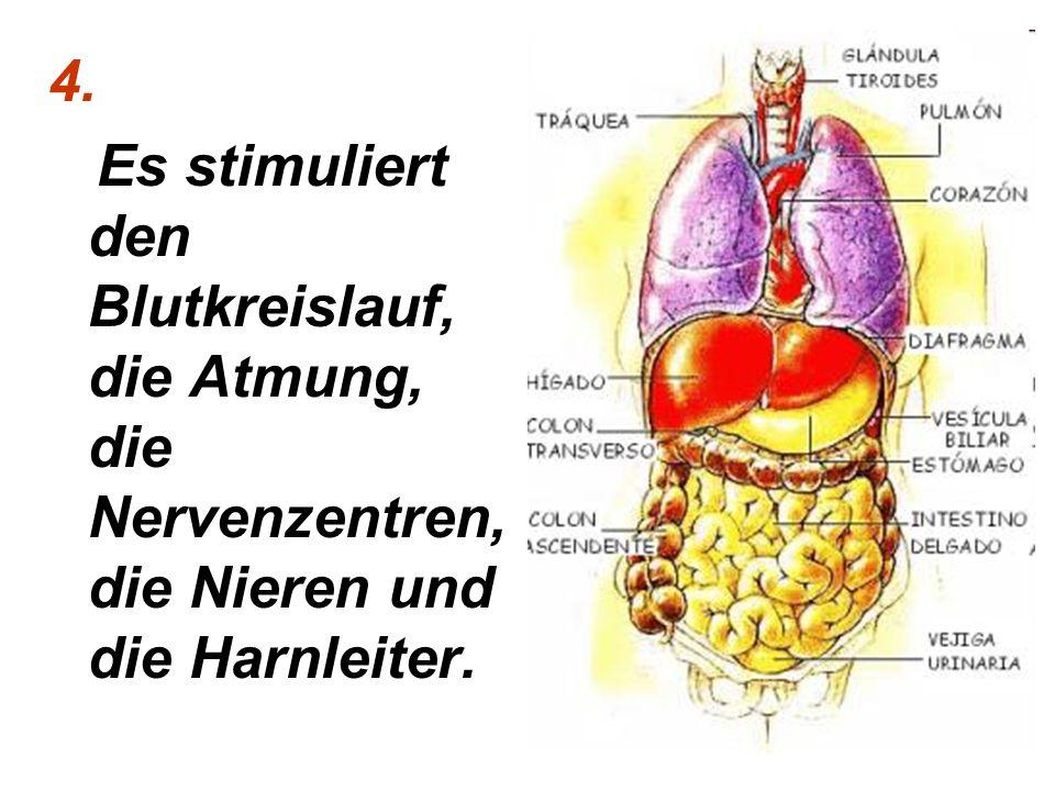 4. Es stimuliert den Blutkreislauf, die Atmung, die Nervenzentren,die Nieren und die Harnleiter.