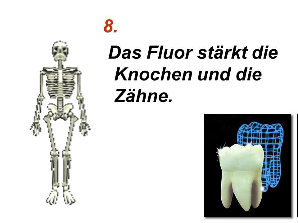8. Das Fluor stärkt die Knochen und die Zähne.