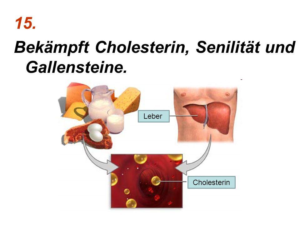 Bekämpft Cholesterin, Senilität und Gallensteine.