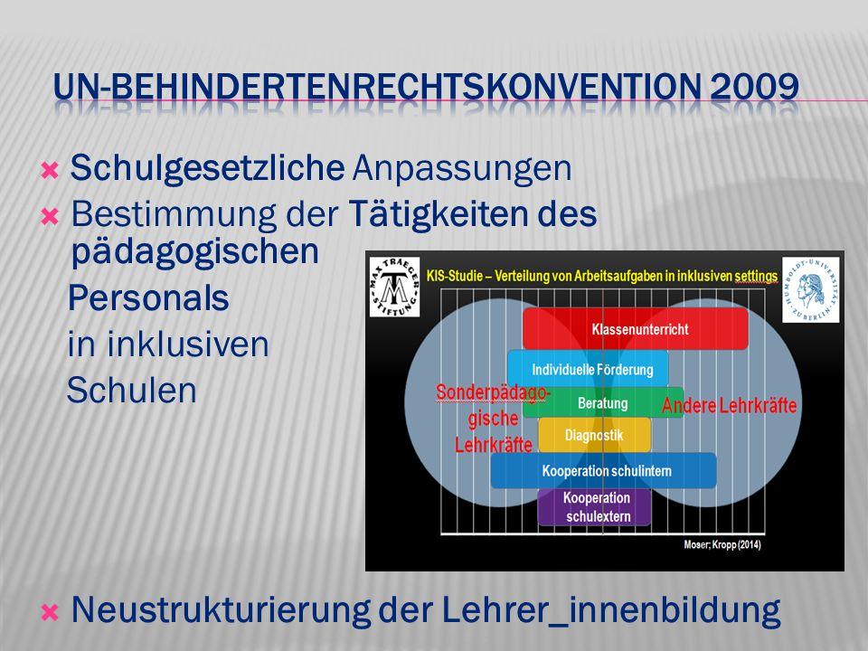 UN-Behindertenrechtskonvention 2009