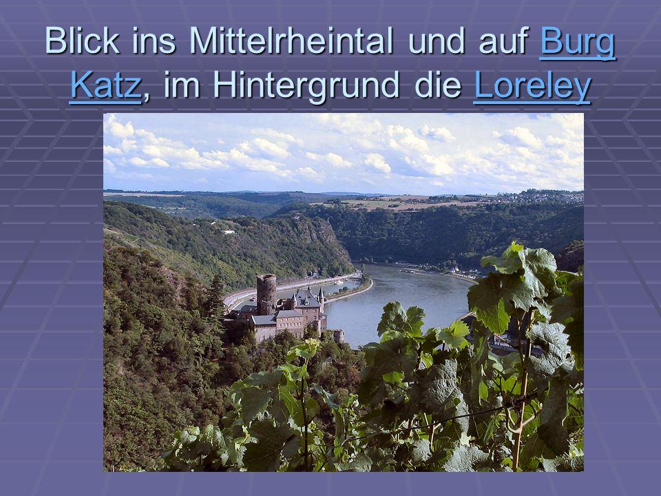Blick ins Mittelrheintal und auf Burg Katz, im Hintergrund die Loreley