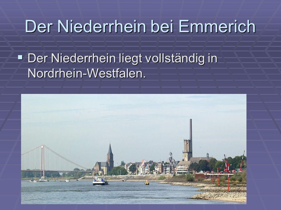 Der Niederrhein bei Emmerich