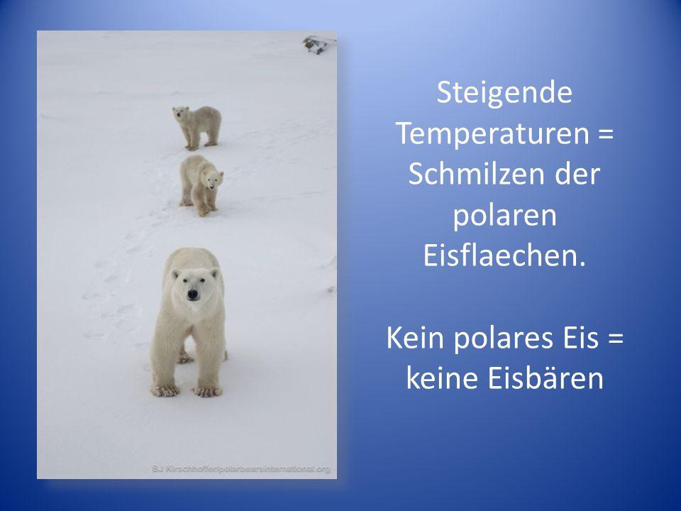 Steigende Temperaturen = Schmilzen der polaren Eisflaechen.
