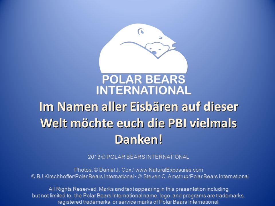 Im Namen aller Eisbären auf dieser Welt möchte euch die PBI vielmals Danken!