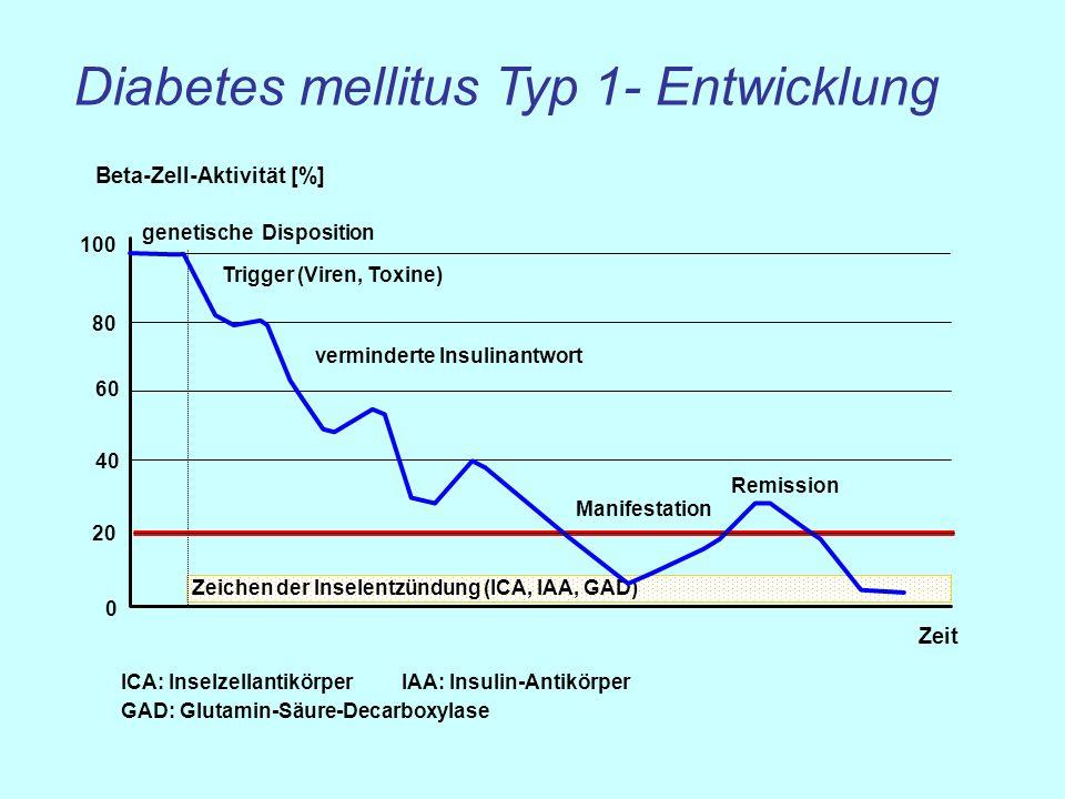 Diabetes mellitus Typ 1- Entwicklung