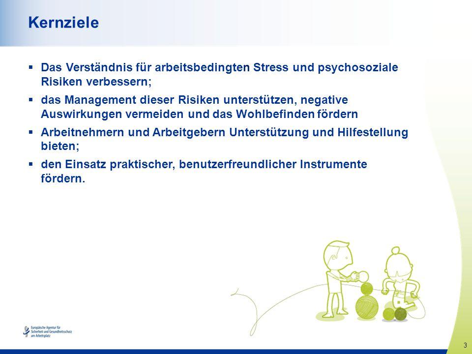 Kernziele Das Verständnis für arbeitsbedingten Stress und psychosoziale Risiken verbessern;