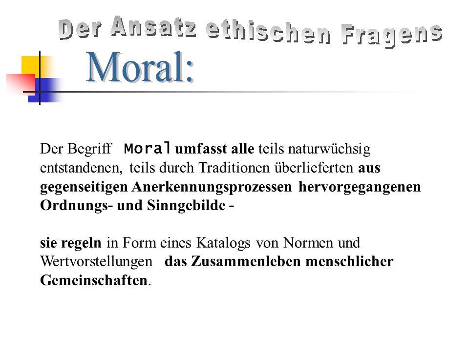 Der Begriff Moral umfasst alle teils naturwüchsig entstandenen, teils durch Traditionen überlieferten aus gegenseitigen Anerkennungsprozessen hervorgegangenen Ordnungs- und Sinngebilde -