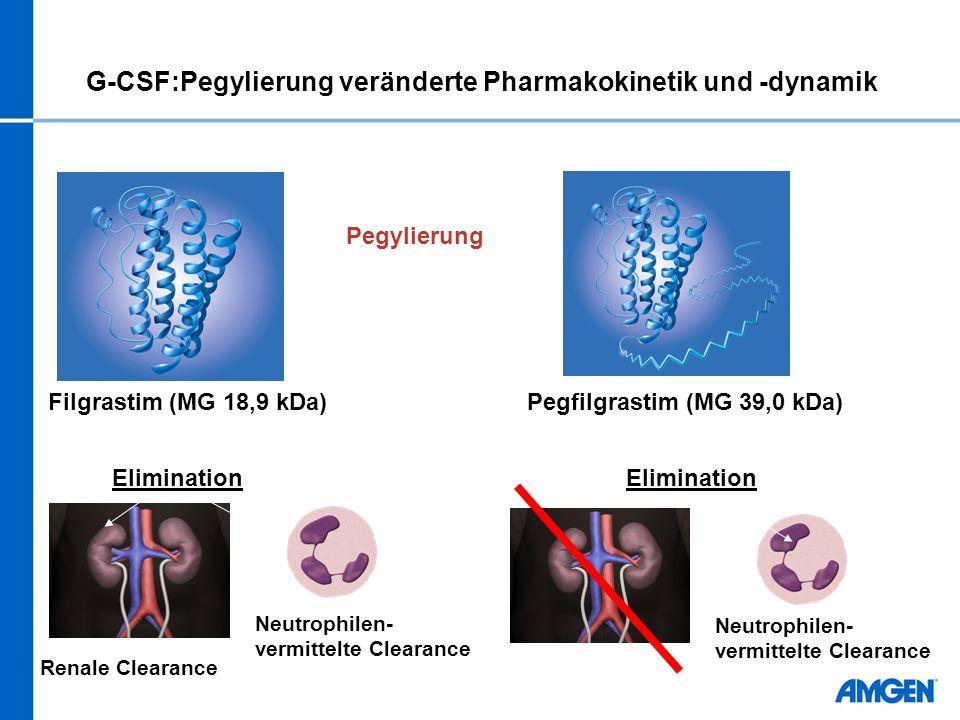 G-CSF:Pegylierung veränderte Pharmakokinetik und -dynamik