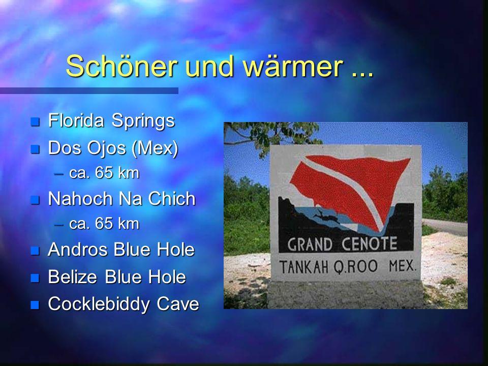 Schöner und wärmer ... Florida Springs Dos Ojos (Mex) Nahoch Na Chich