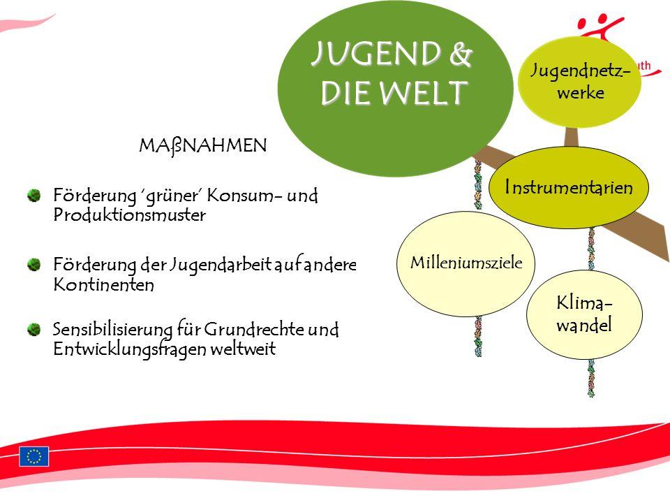 JUGEND & DIE WELT Instrumentarien Jugendnetz- werke MAßNAHMEN