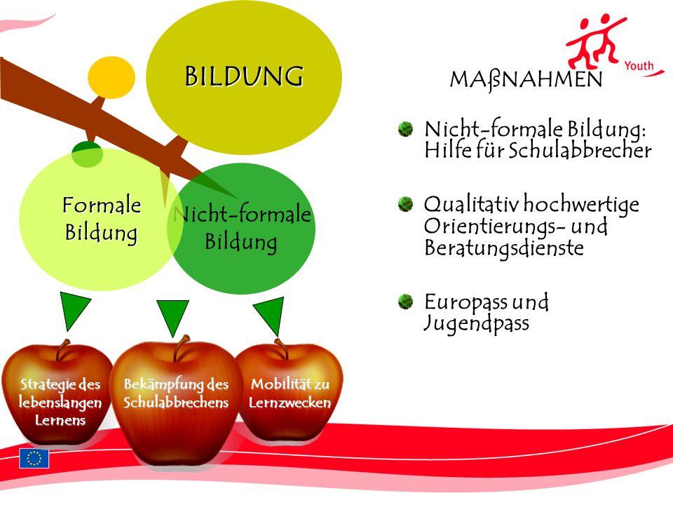 BILDUNG MAßNAHMEN Nicht-formale Bildung: Hilfe für Schulabbrecher