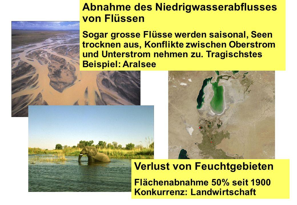 Abnahme des Niedrigwasserabflusses von Flüssen