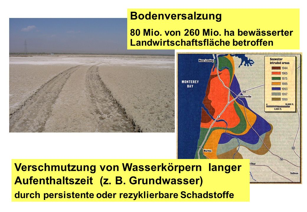 Bodenversalzung 80 Mio. von 260 Mio. ha bewässerter Landwirtschaftsfläche betroffen.