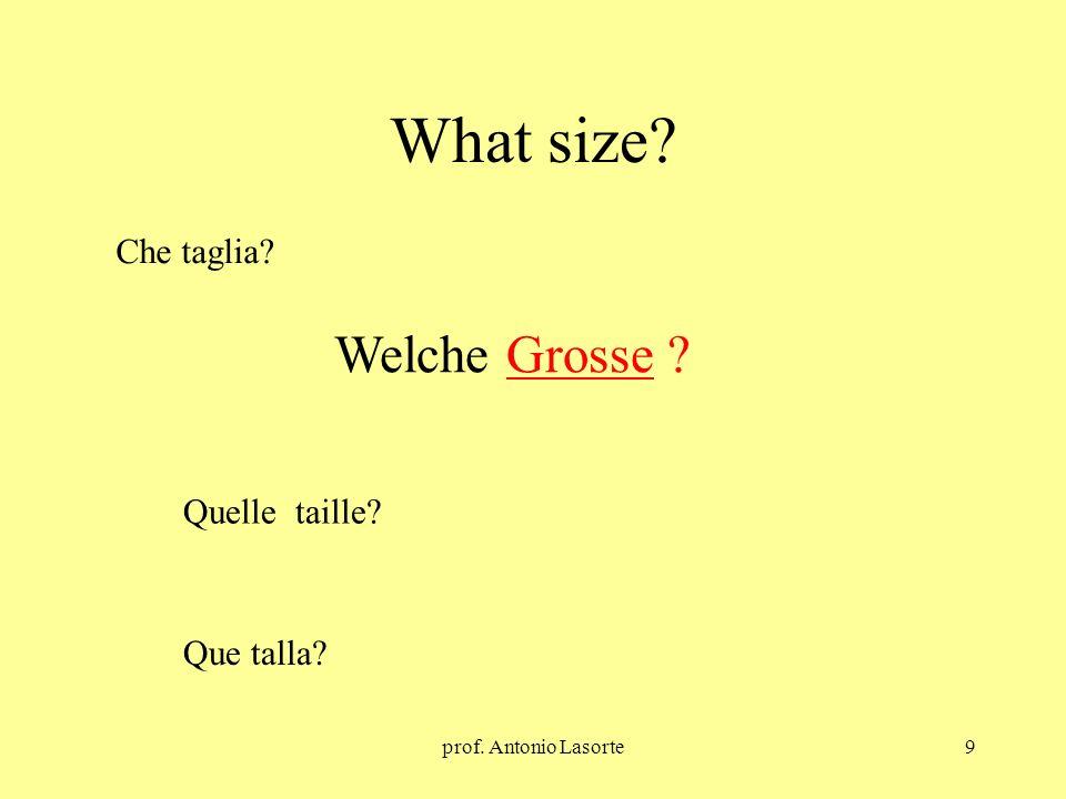 What size Welche Grosse Che taglia Quelle taille Que talla