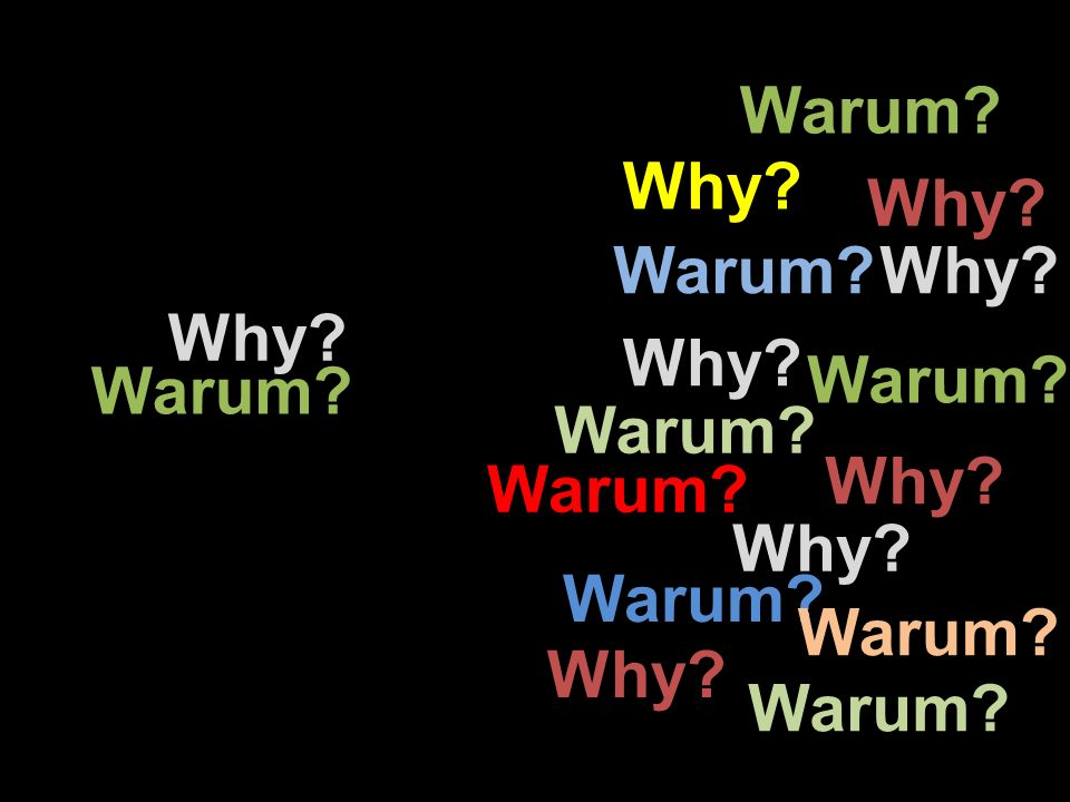 Warum Why Why Warum Why Why Why Warum Warum Warum Why Warum Why Warum Warum