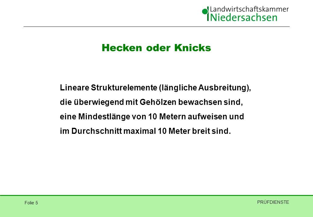 Hecken oder Knicks Lineare Strukturelemente (längliche Ausbreitung),