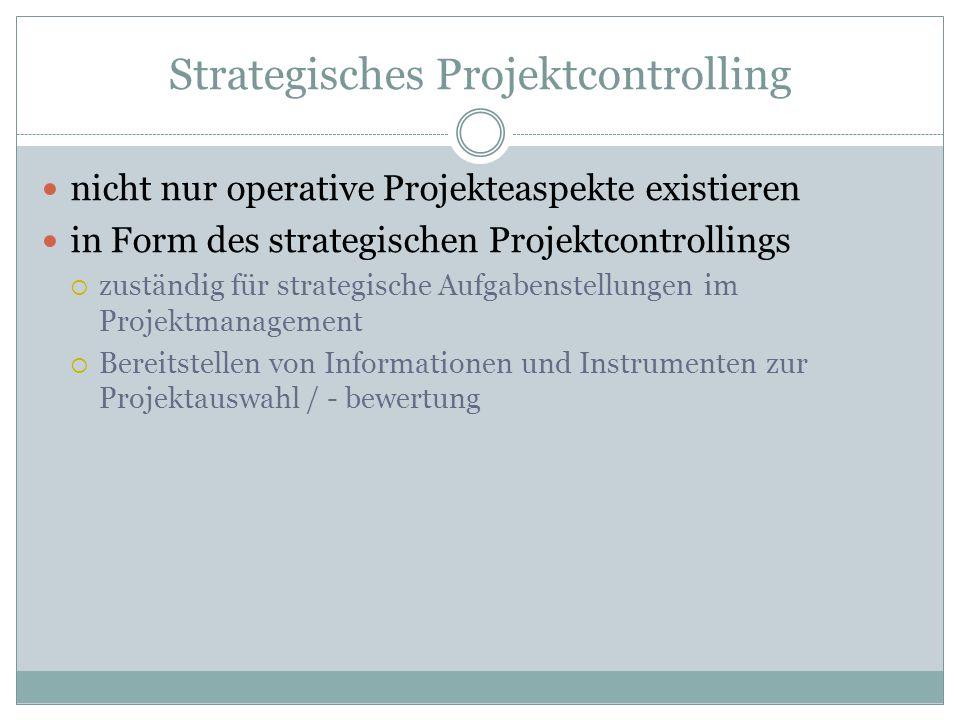 Strategisches Projektcontrolling