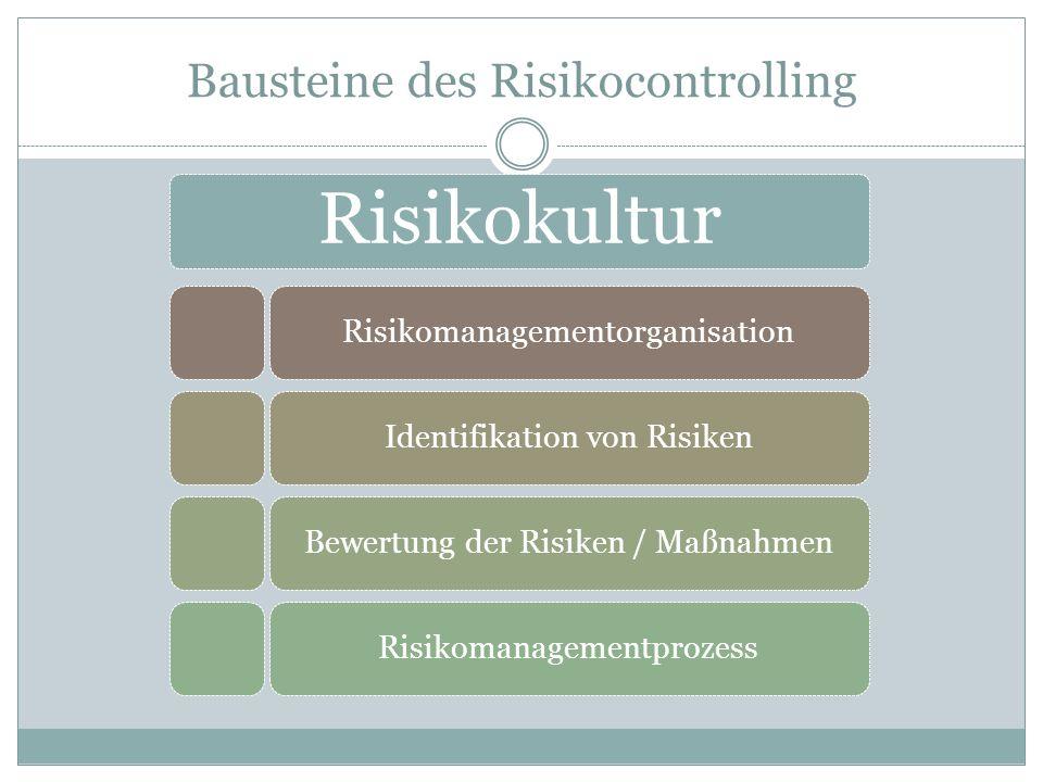 Bausteine des Risikocontrolling