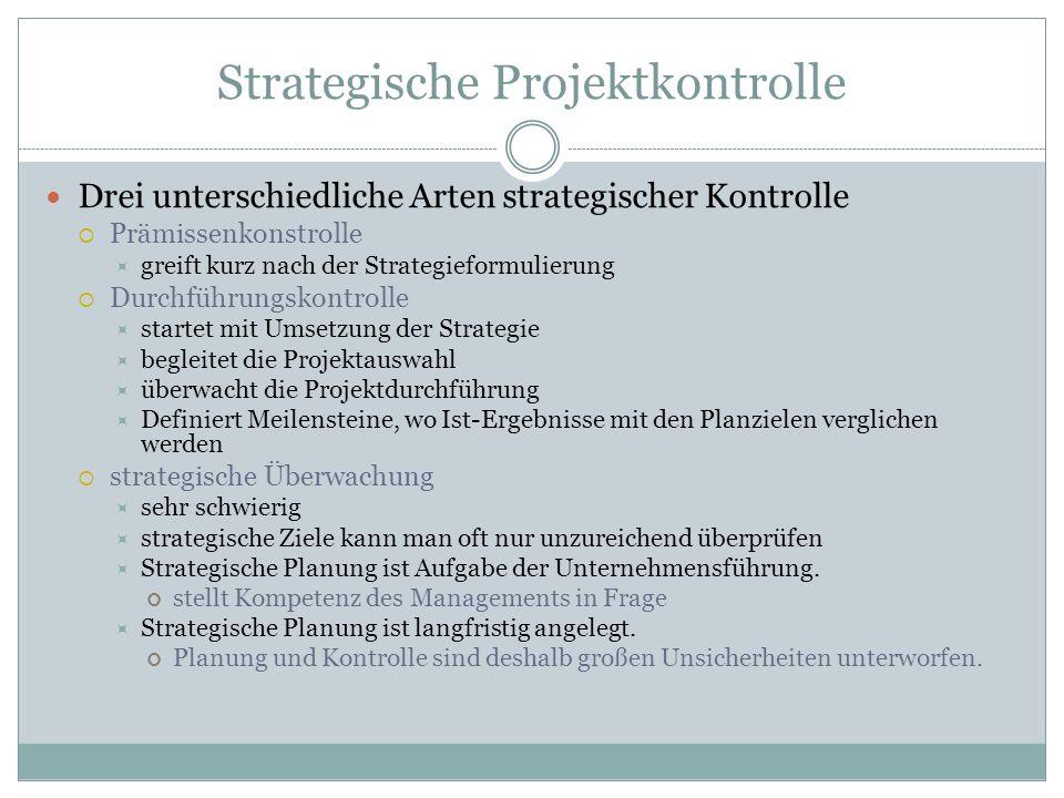 Strategische Projektkontrolle