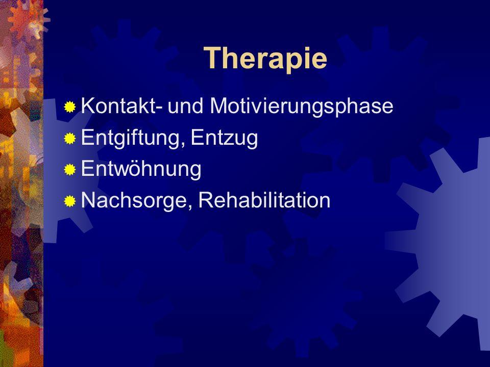 Therapie Kontakt- und Motivierungsphase Entgiftung, Entzug Entwöhnung