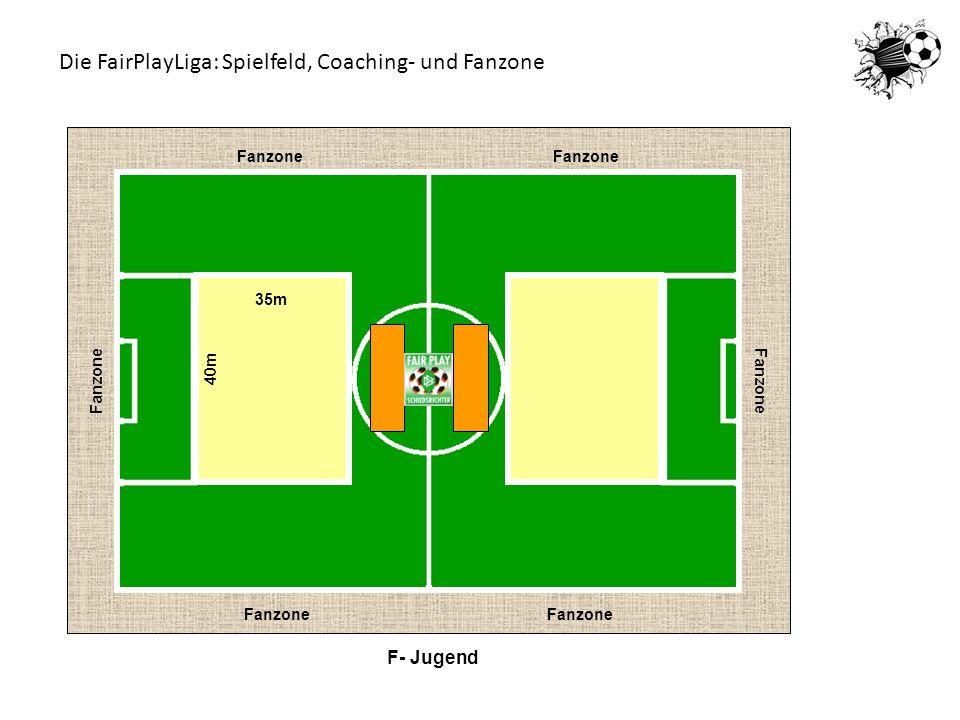 Die FairPlayLiga: Spielfeld, Coaching- und Fanzone