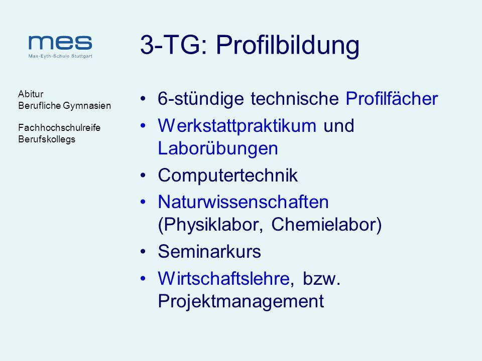 3-TG: Profilbildung 6-stündige technische Profilfächer