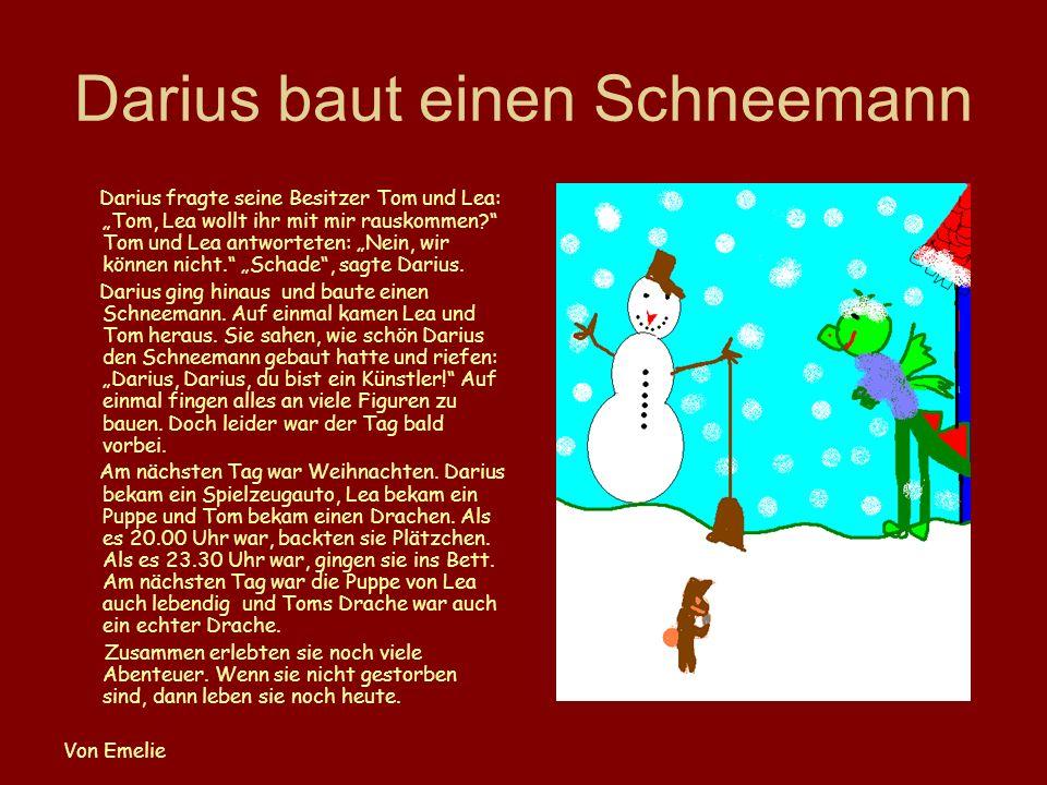 Darius baut einen Schneemann
