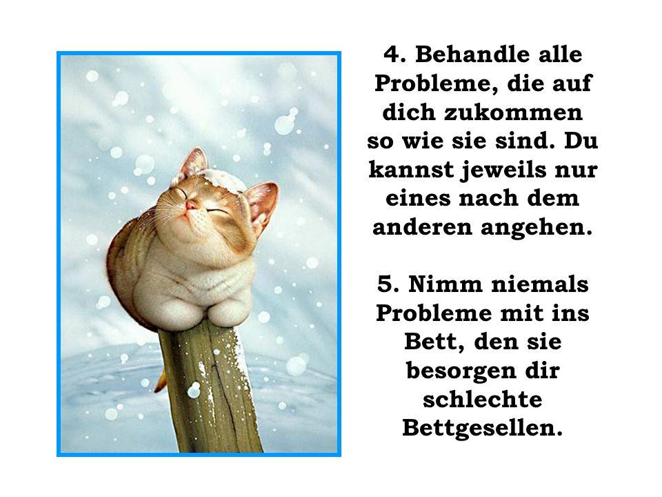 4. Behandle alle Probleme, die auf dich zukommen so wie sie sind