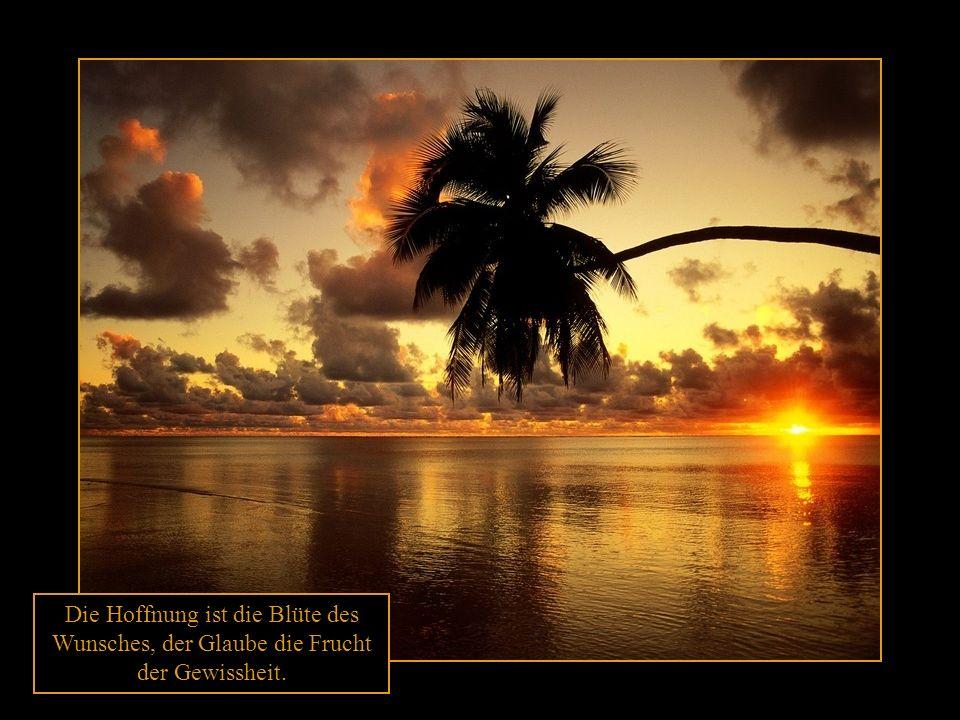Die Hoffnung ist die Blüte des Wunsches, der Glaube die Frucht der Gewissheit.