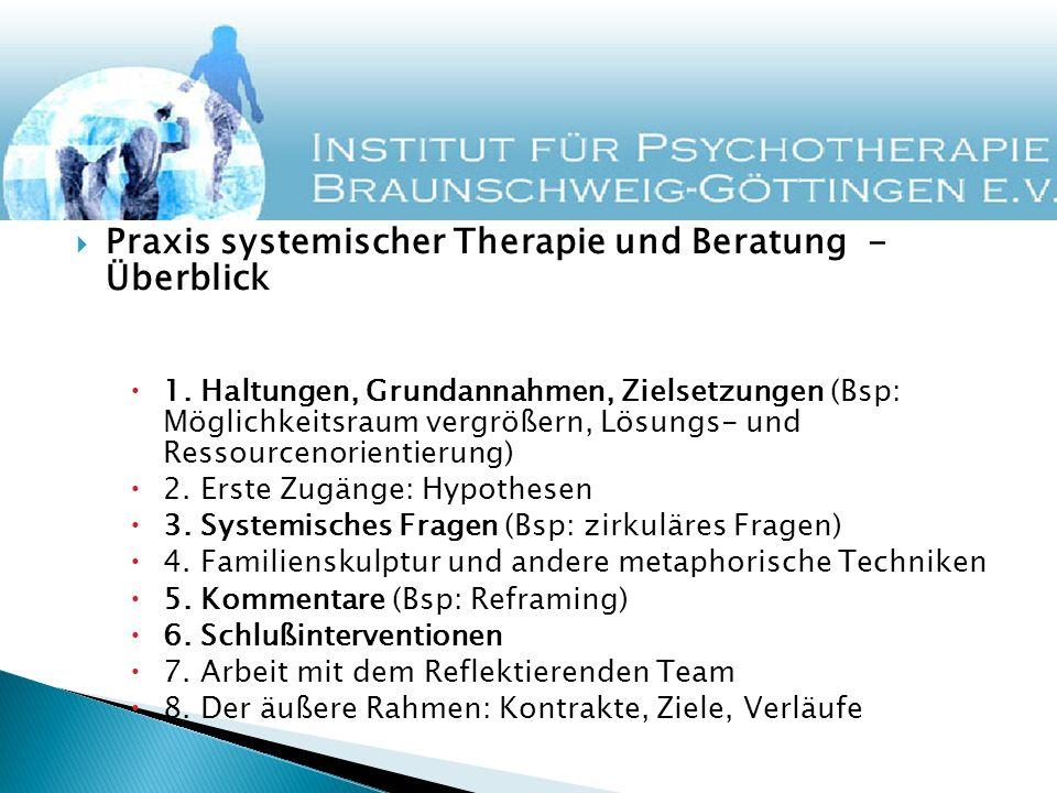 Praxis systemischer Therapie und Beratung - Überblick