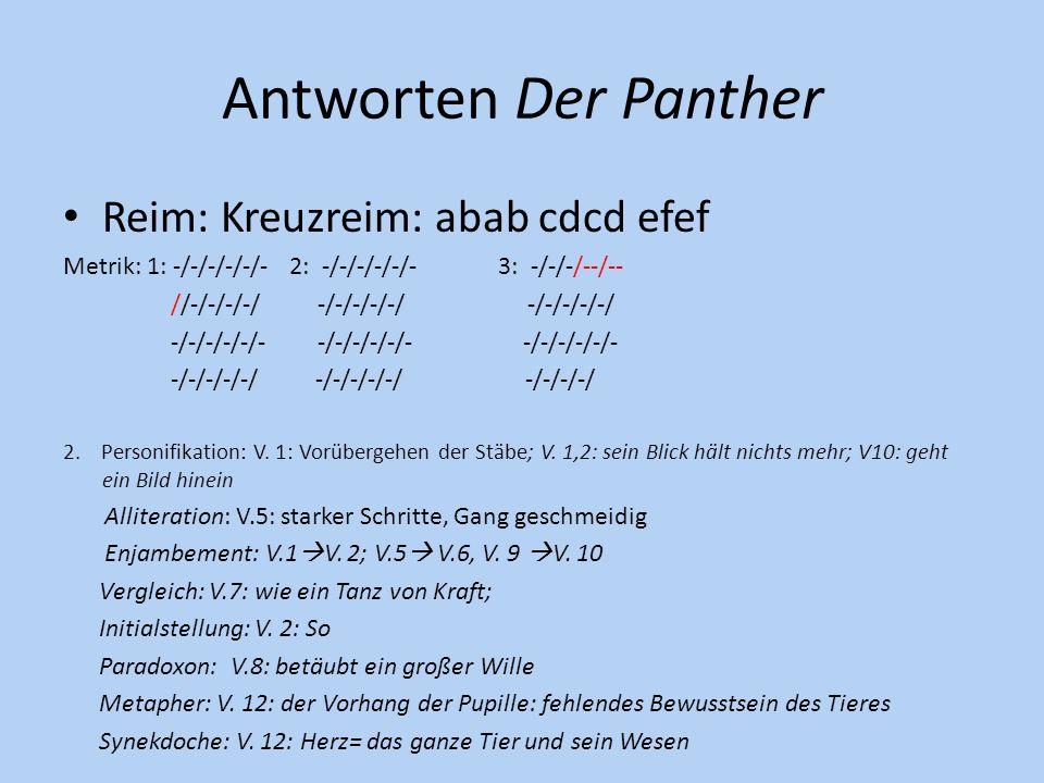 Antworten Der Panther Reim: Kreuzreim: abab cdcd efef