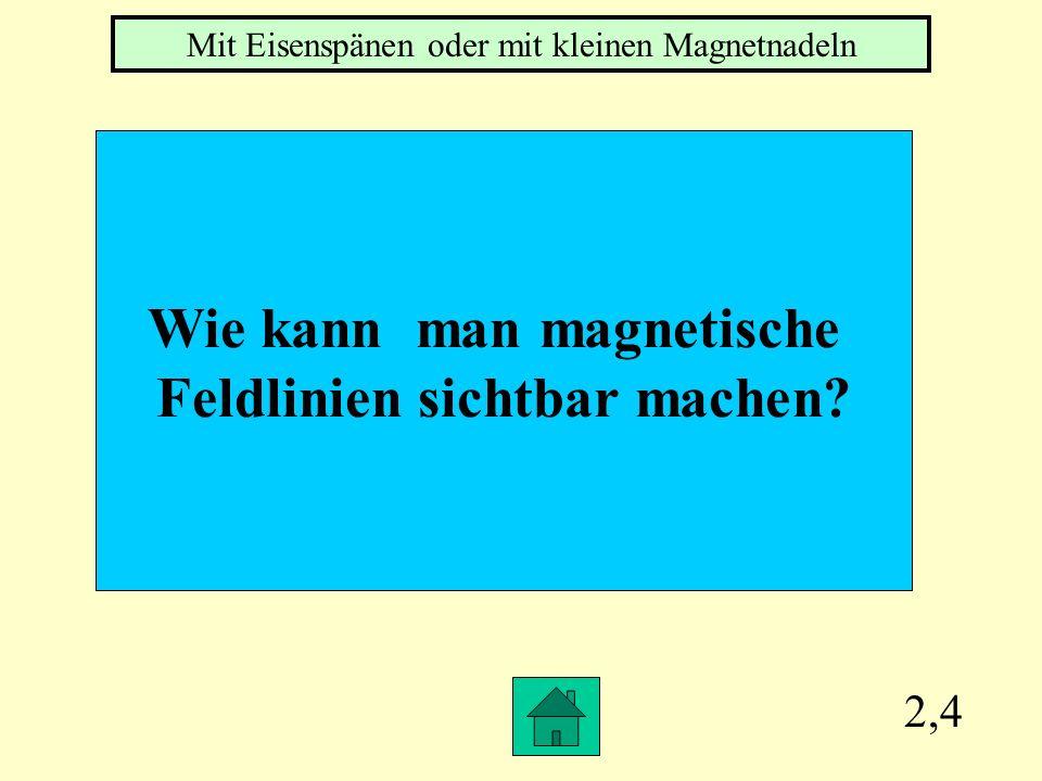 Wie kann man magnetische Feldlinien sichtbar machen