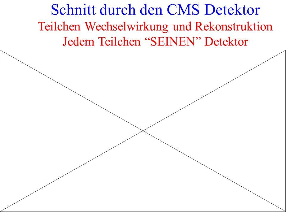 Schnitt durch den CMS Detektor