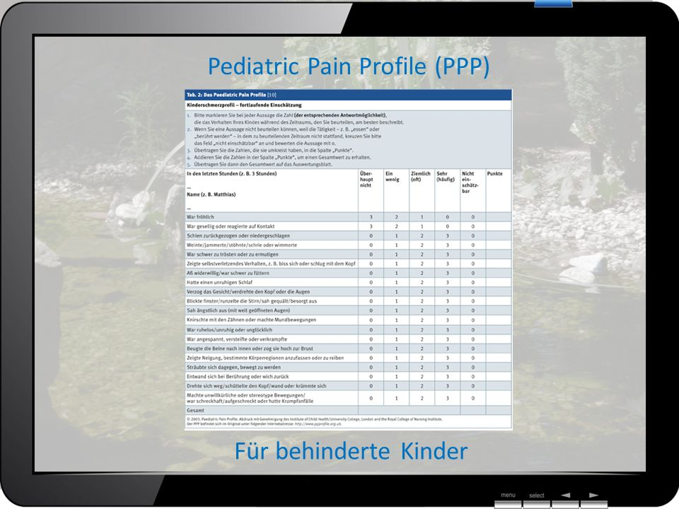 Pediatric Pain Profile (PPP)