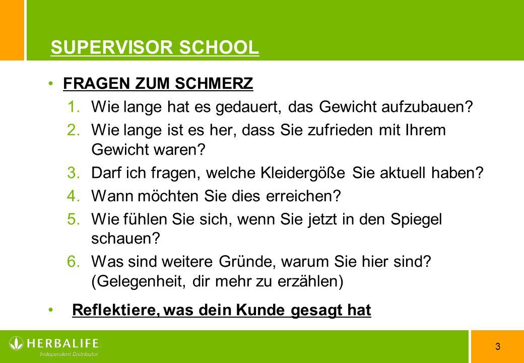 SUPERVISOR SCHOOL FRAGEN ZUM SCHMERZ