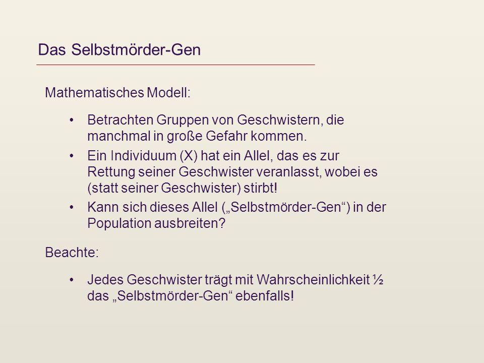 Das Selbstmörder-Gen Mathematisches Modell: