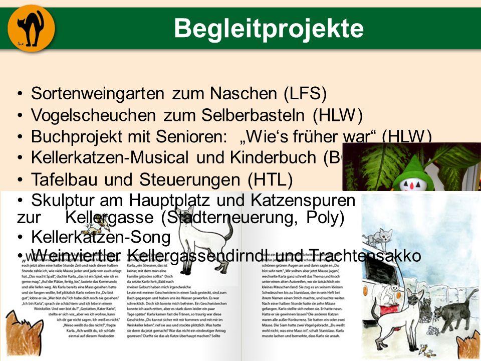 Begleitprojekte Tafelbau und Steuerungen (HTL)